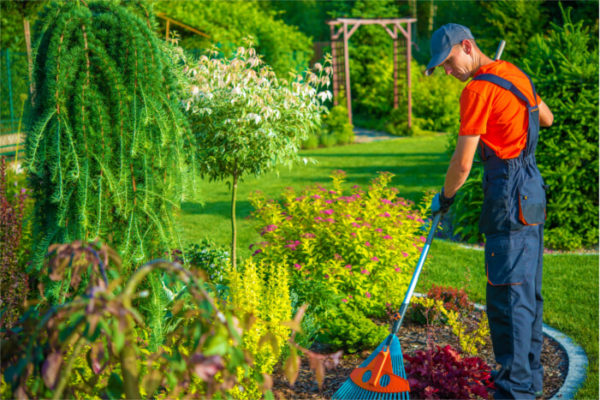 Wiosna 2018 – jak przygotować ogród do sezonu?